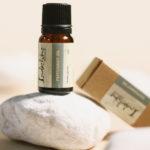 Dùng Tinh dầu Peppermint có lợi cho chân tóc và da đầu